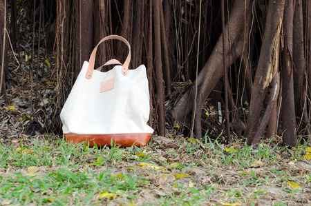 pochette: Fashion Canvas Bags with Banyan Tree Background Stock Photo