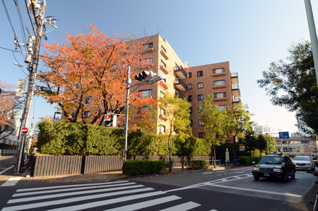 omotesando: TOKYO - NOV 24  Residential Building on Omotesando Street on November 24  2013, Omotesando street sometimes referred to as Tokyo
