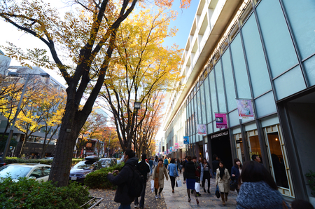 omotesando: TOKYO - NOVEMBER 24  People shopping around Omotesando Hills on november 2013,24  Omotesando Hills consists of six floors about 100 upmarket shops, cafes, restaurants and beauty salons  Editorial