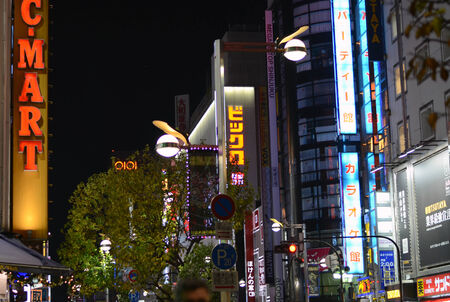 Tokyo, Japan - November 23, 2013  Neon lights in Shinjuku district on 23 November, 2013 in Tokyo, Japan  East Shinjuku is one of the most crowded places in Tokyo at night