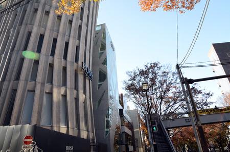 omotesando: Japan, Tokyo - November 24, 2013  Futuristic Architecture on Omotesando Street on November 24, 2013, Omotesando street sometimes referred to as Tokyo Editorial