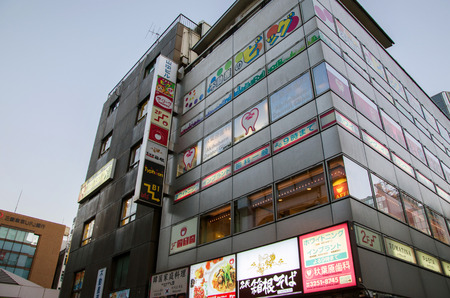 sex traffic: Tokyo, Japan - November 21, 2013: Building in Akihabara district November 21, 2013 in Tokyo, Japan. The district is a major shopping area for electronic, computer, anime, games and otaku goods.