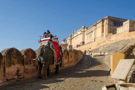 jaipur: Jaipur, India - December 29, 2014: Decorated elephant carries tourists to Amber Fort on December 29, 2014 in Jaipur, Rajasthan, India.