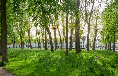 bruges: Tree Houses in the Beguinage Garden in Bruges Belgium