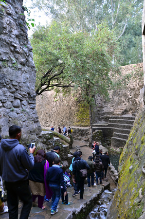 garden waste: Chandigarh, India - January 4, 2015: People visit Rock garden on January 4, 2015 in Chandigarh, India. The rock garden was founded by artist Nek Chand in 1957 and is made completely of recycled waste.