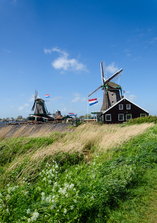 zaanse: Wind mills in Zaanse Schans, The Netherlands. Editorial