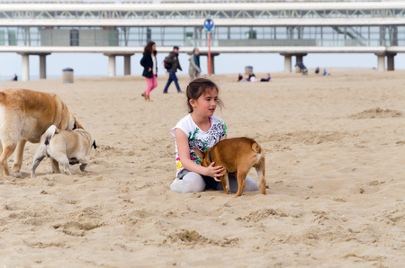 scheveningen: The Hague, Netherlands - May 8, 2015: Children playing at the beach, Scheveningen district in The Hague, Netherlands. Scheveningen is a modern seaside resort with a long sandy beach, an esplanade, a pier, and a lighthouse.