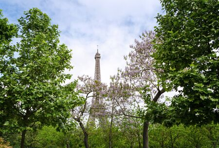 champ: Eiffel Tower at Champ de Mars Garden in Paris, France Stock Photo