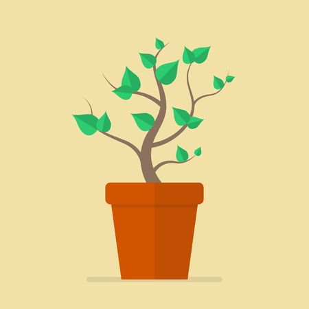 growing plant: Plant in pot flat icon. Vector Illustration