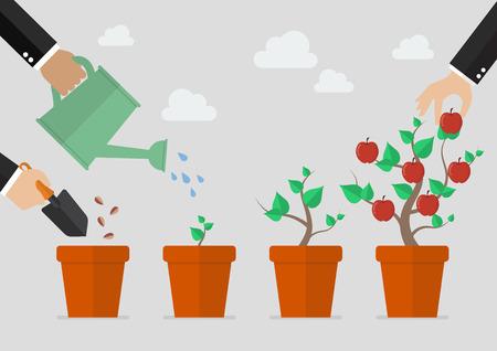 Het planten van de boom proces. De financiële groei concept.