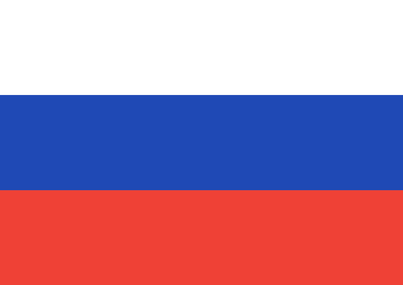 Russia flag vector illustration. graphic