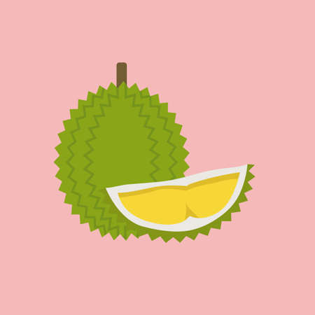 Durian with cut piece in flat style. Summer tropical fruit. Vector illustration