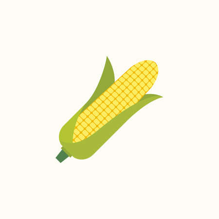 Corn cob in a green husk isolated on white background. Flat style design. Vector illustration