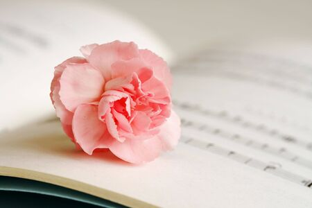 sheetmusic: Flower and notes