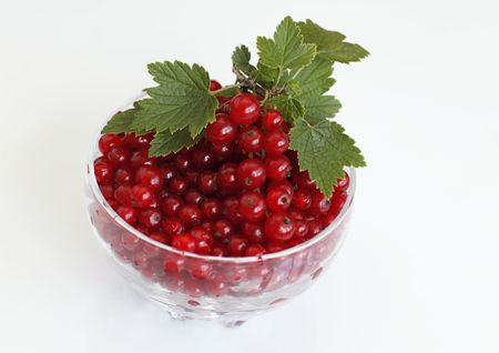 A bowl full of fresh red currant photo