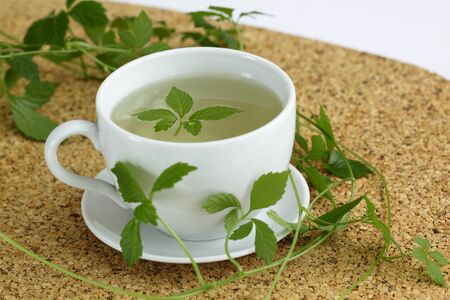 Jiaogulan tea  Gynostemma pentphyllum Jiao Gu Lan  is called   Stock Photo