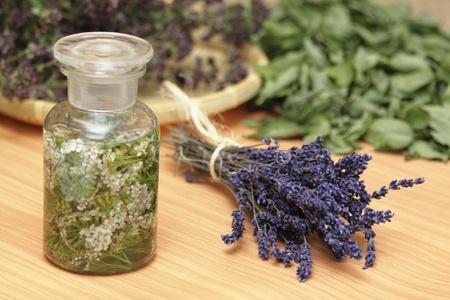 Medicinal herbs, lavender, yarrow, wild-thyme, mint Stock Photo