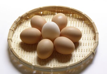 Bio eggs  from the farm