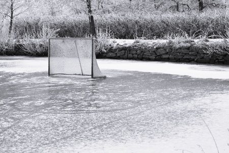 Ice ring and hockey goal