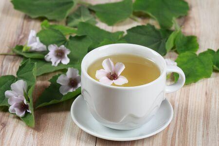 marshmallow: Herbal tea from marshmallow Stock Photo