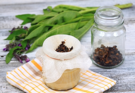 salve: Alternative medicine,  filtering Comfrey ointment good for bones,  fresh comfrey and dried comfrey roots around