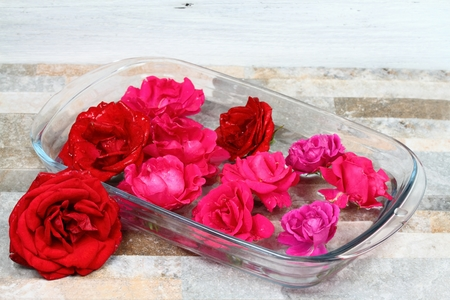 sundrops: Making Bach flower remedy from beautiful roses.  Bach flower remedies is natural method of healing Stock Photo