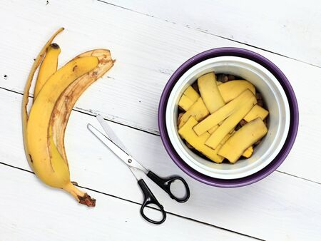 Banana peel good for plant fertilization. Eco friendly natural way how to manure plants and flowers indoor. Banana peel cut in a pot.
