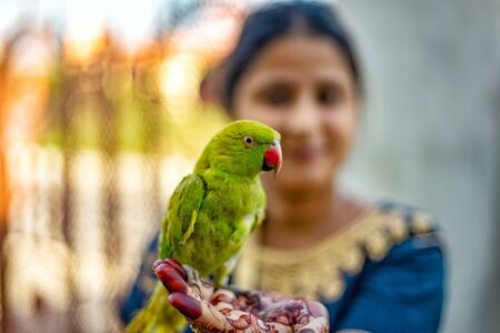 Girl with henna tattoo holding a green parrot Archivio Fotografico - 130779604