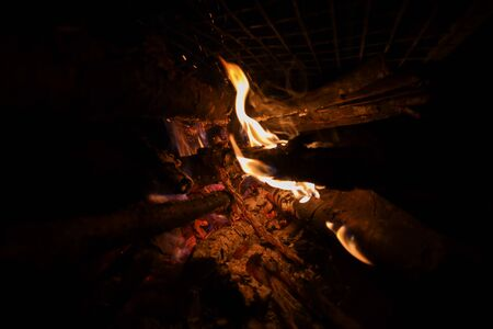 Burning wooden logs for barbecue or skewer