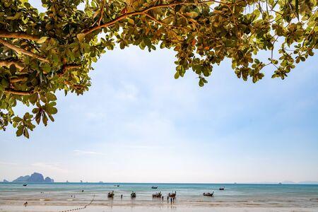 Traditional Longtail boats parked at Ao Nang Beach in Krabi, Thailand.