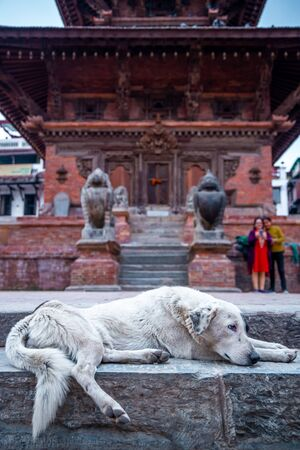 A dog sleeps infront of ancient temple at Patan Durbar Square in Nepal.