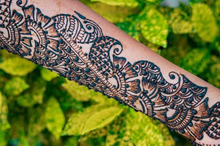 Hands of woman with detailed henna design art