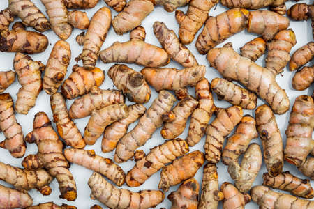 Turmeric roots closeup. Fresh harvest of many turmeric roots background texture.