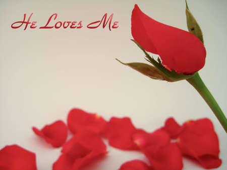 he: He Loves Me