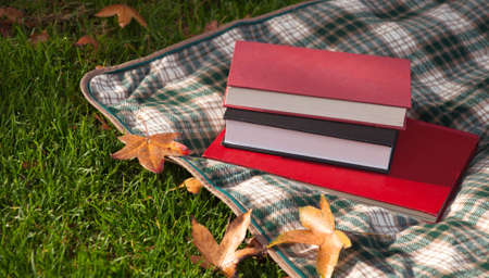 A close up of some books and a blanket on green grass with fall leaves.
