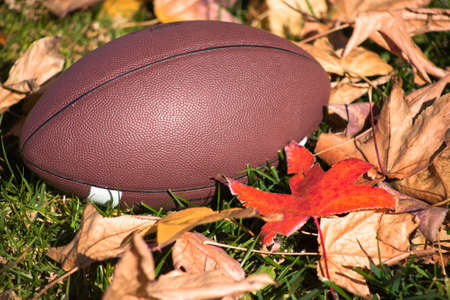 A close up of a American football around grass and leaves.