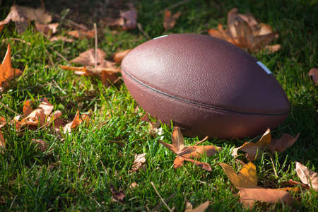 fall leaves on white: A close up of a American football around grass and leaves.