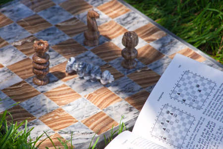 A close up of a marble chess set sitting on green grass. photo