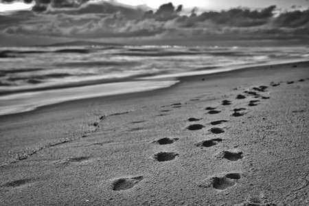A close of footsteps in the sand during a cloudy sunset in Huntington Beach, California. Stock Photo