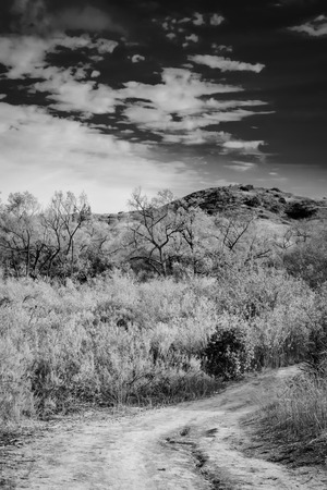 A black and white shot of a dirt road with bright white clouds in the background.