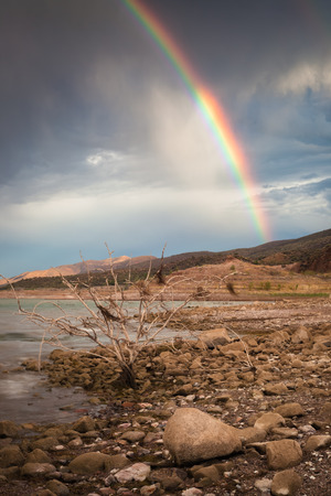 A shot of Lake Roosevelt in Arizona with a rainbow in the background and a dead plant in the foreground