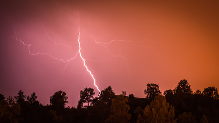 A night wide shot looking over a tree line to a colorful lighting strike