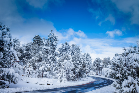 A wide shot of a small two lane road runing through a winter landscape.