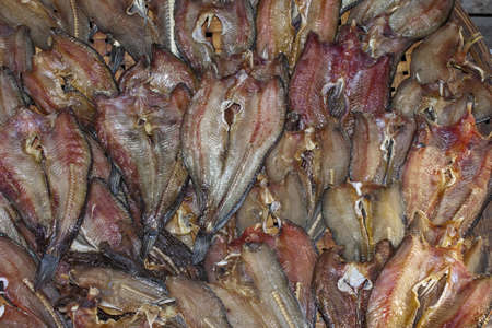 Dried fishes   Stock Photo - 13367654