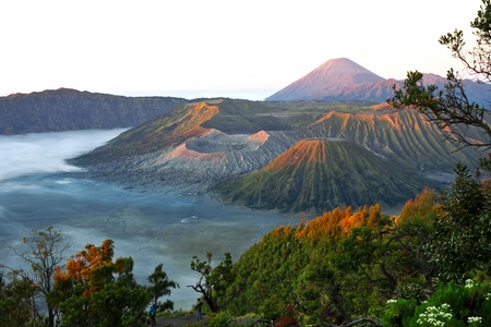 Volcanoes in Bromo Tengger Semeru National Park at sunrise  Java, Indonesia  Stock Photo - 15245371