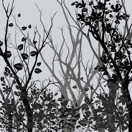 bareness: Tree silhouettes, vector illustration