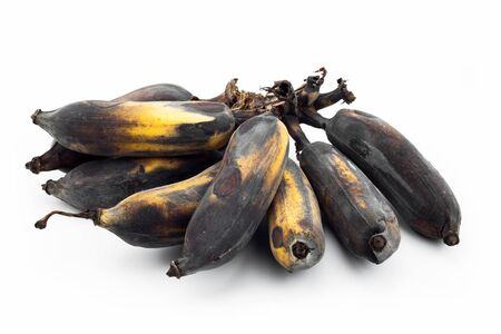 moulder: over ripe bananas isolated on white background  rotten bananas