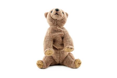Stuk speelgoed grizzly beer op witte achtergrond wordt geïsoleerd die