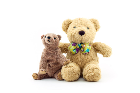 stuffed toys: Two toy teddy bears isolated on white background Stock Photo