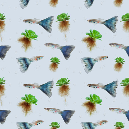 poecilia: guppy fish and bevel plant seamless pattern background